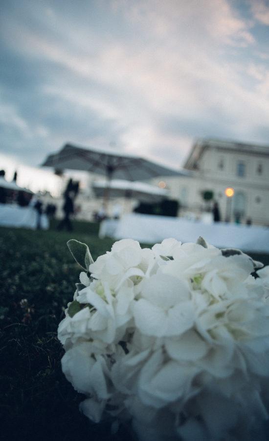 Fiori e Piante - wedding planner